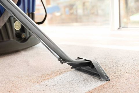 Reasons to Hire a Professional Carpet Cleaner