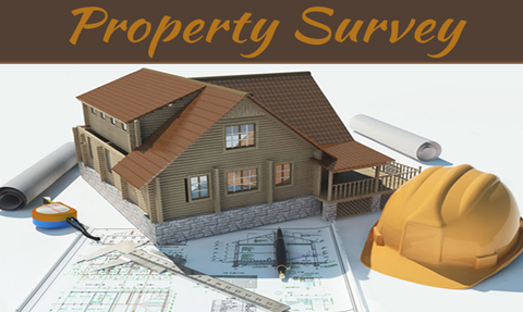 The Pitfalls of Not Getting a Property Survey